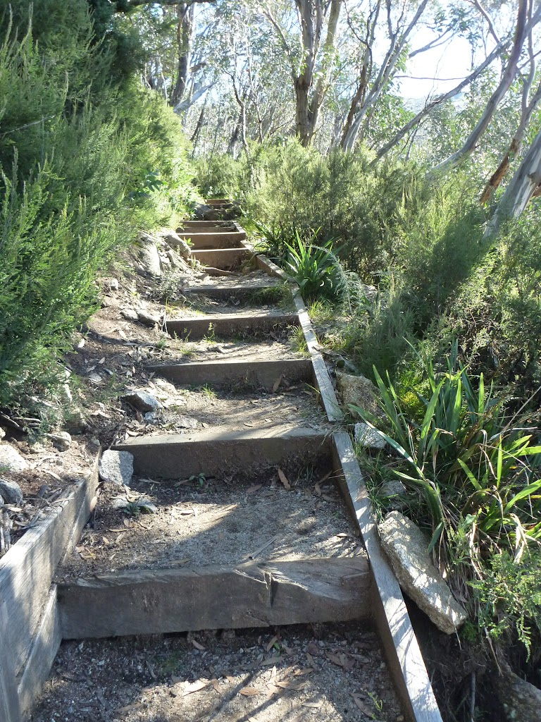 Steps on Merrits Nature Track