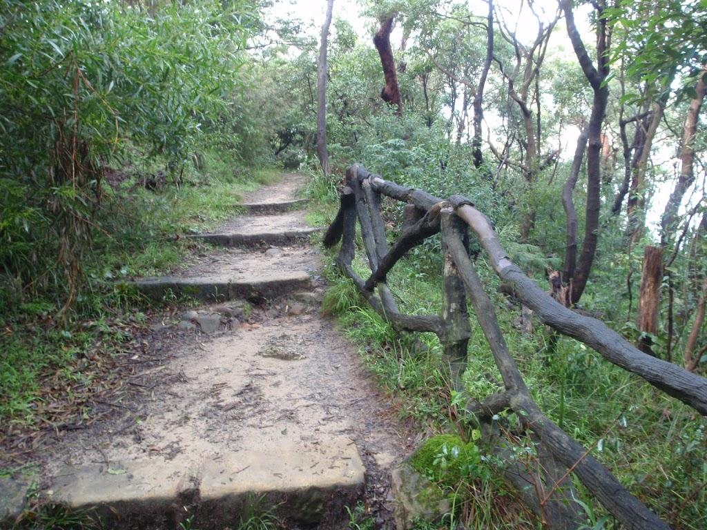 Steps near the Zoo