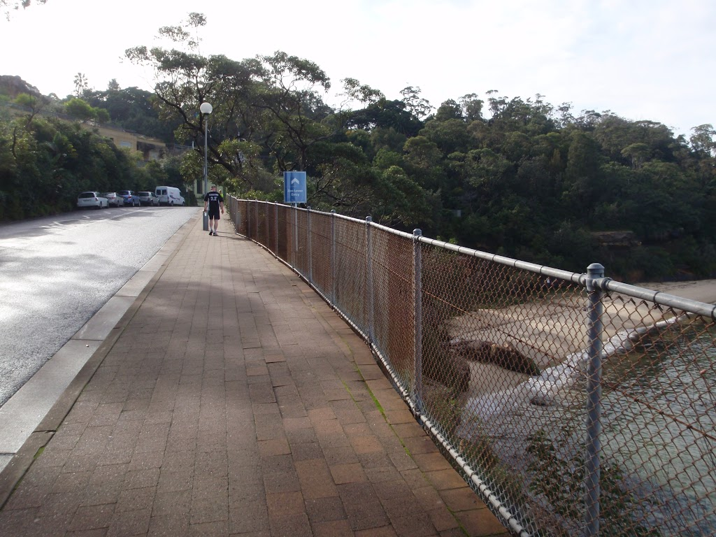 Walking below Taronga Zoo (278966)
