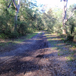Management trail leading into Freshwater Camping Area