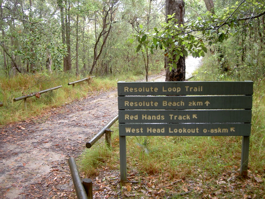 Track from Resolute Picnic Area
