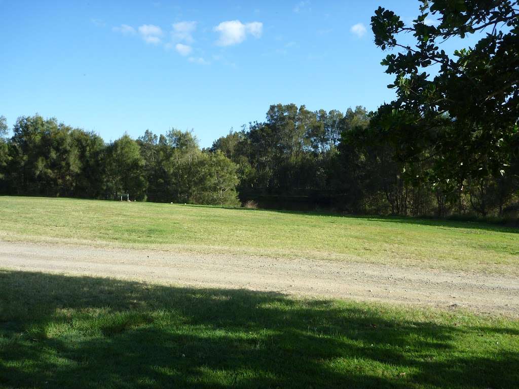 Plenty of open space at Melaleuca camping ground