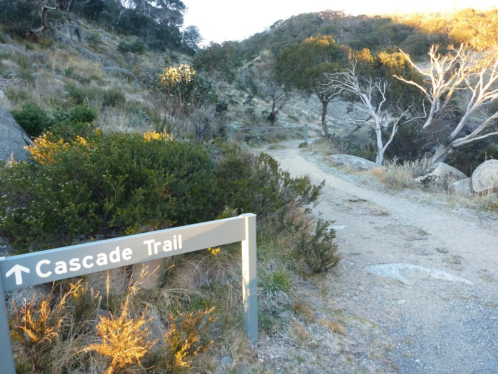 Cascade Trail track head (280337)