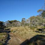 Cascade Trail (280799)