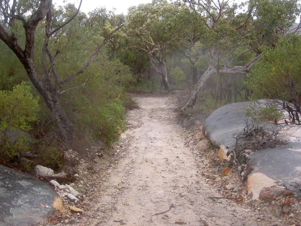 Headland Service Trail