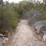 Headland Service Trail (28145)