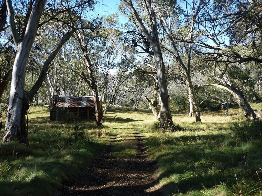 Behind Cascade Hut