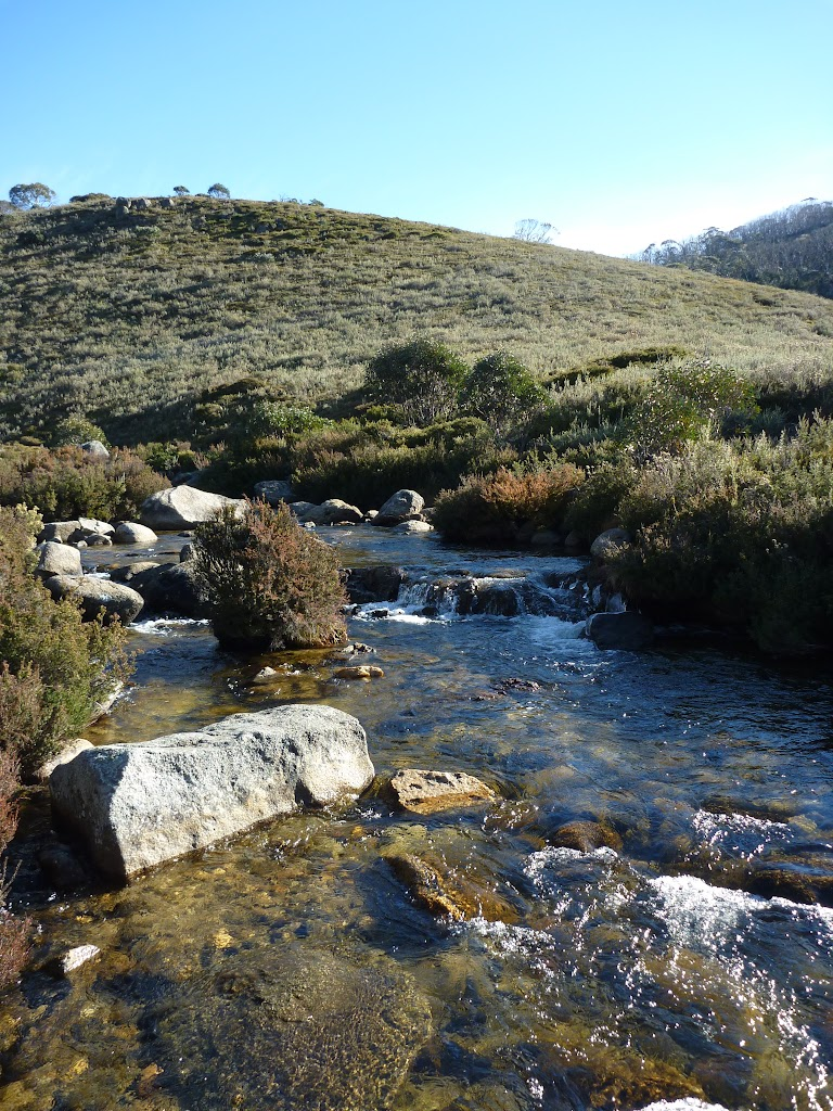 Thredbo River near Cascade Trail head
