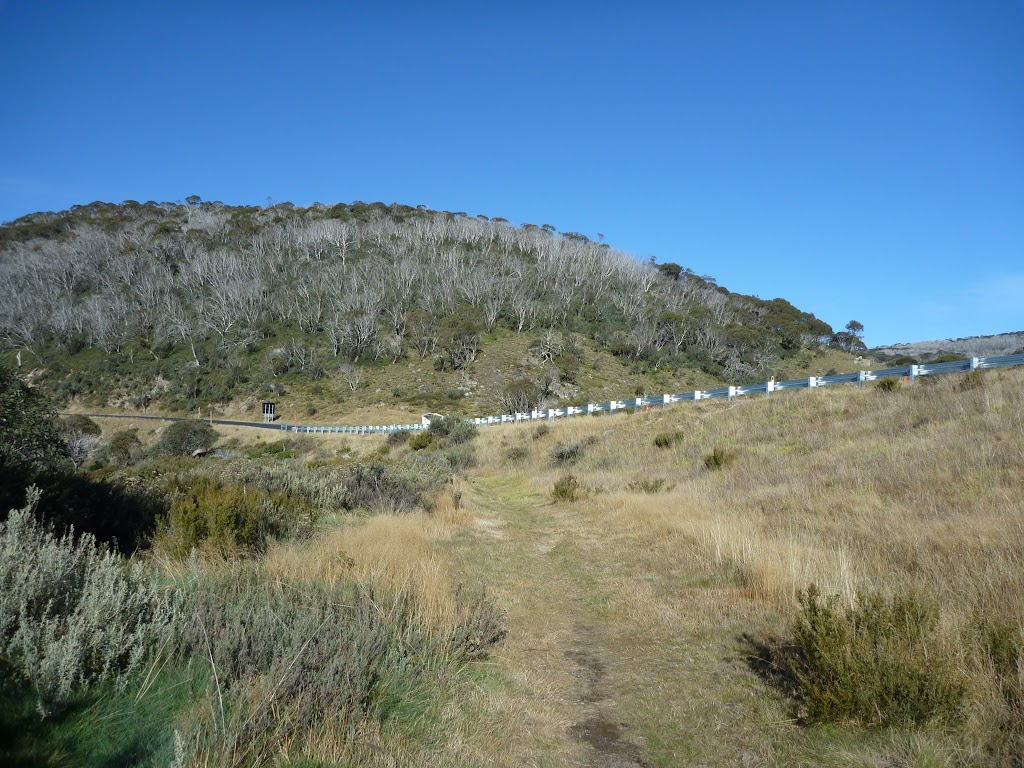Track leading the Alpine Way