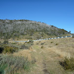 Track leading the Alpine Way (283853)