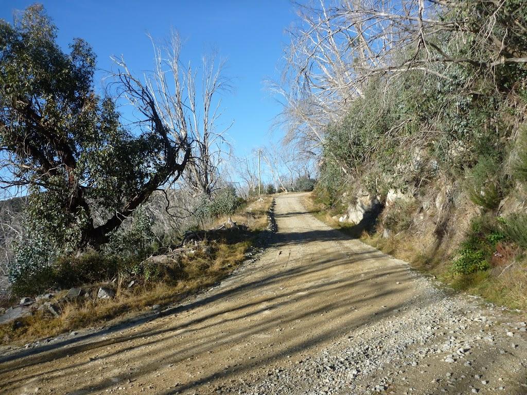 Schlink Trail (284633)