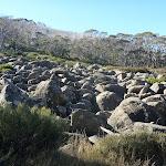 Rock fall beside trail (286027)
