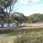 Camping beside Three Mile Dam