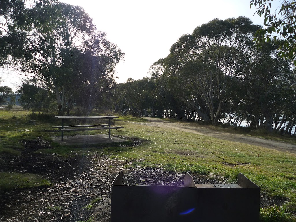 One of many areas to set up at Three Mile Dam campsite