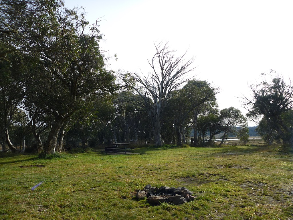Grassy area to pitch a tent at Three Mile Dam campsite