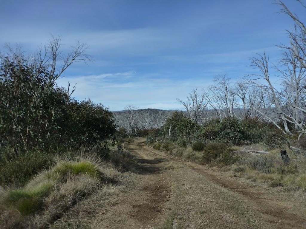 Walking along Round Mountain Trail