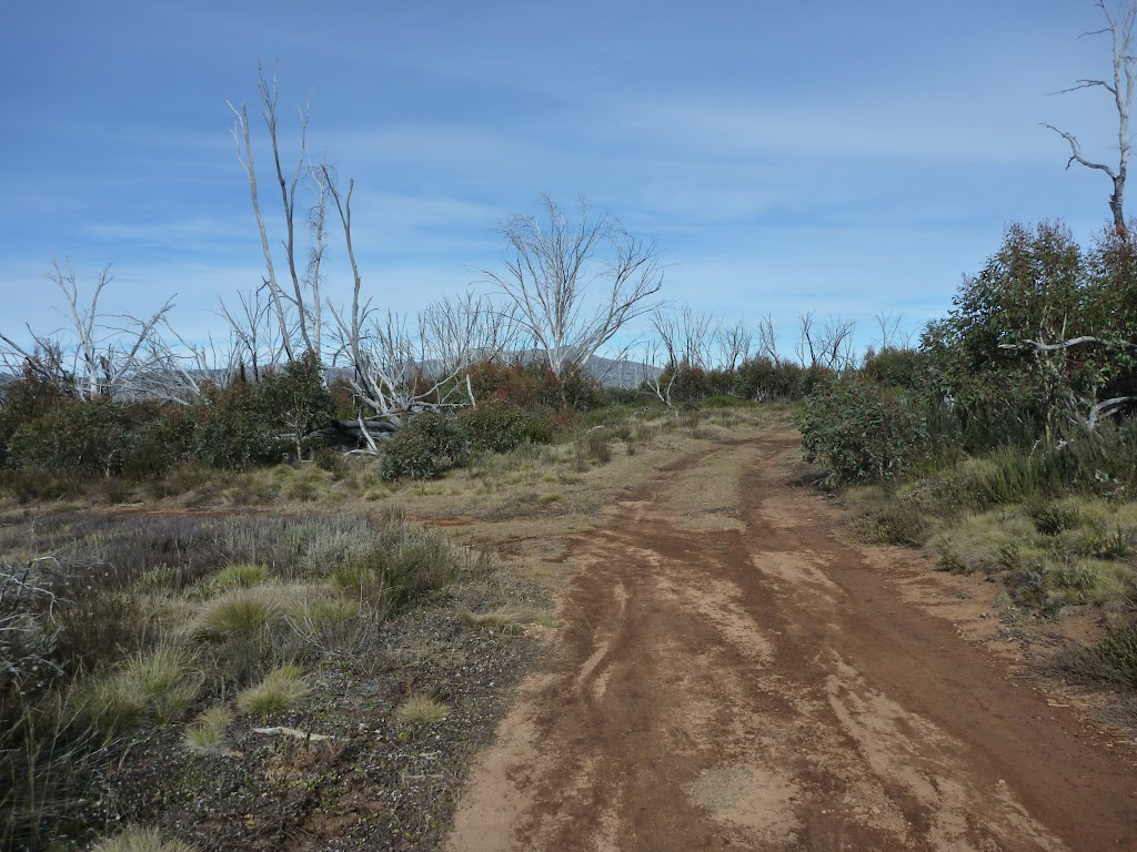 Int of Round Mountain and Farm Ridge Trails