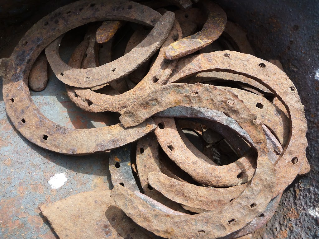 Some horse shoes at Round Mountain Hut