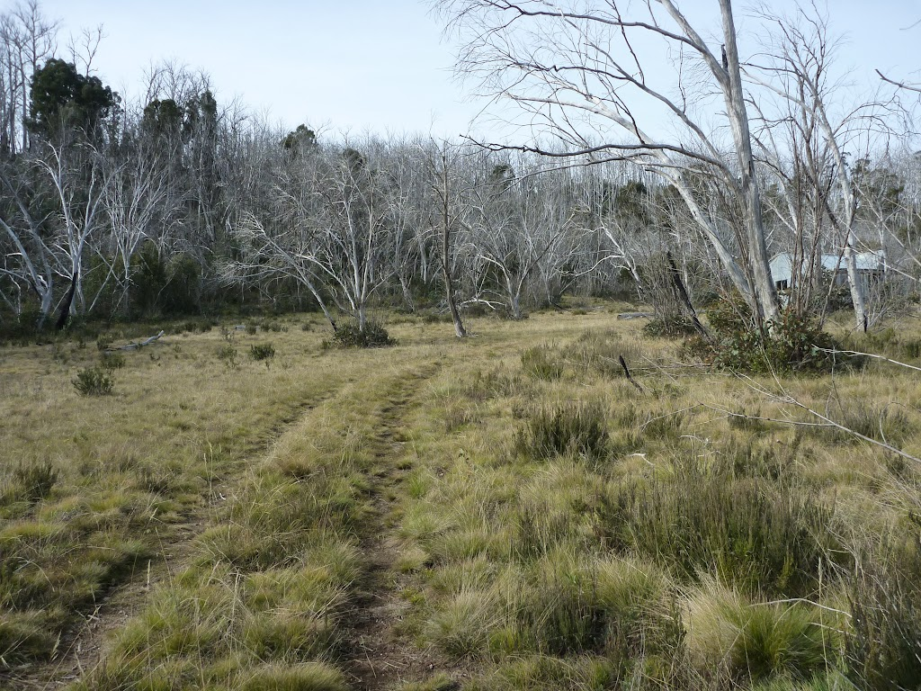 Trail leading to Paton's Hut