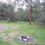 Open area at back of Bradneys Gap Camping area