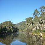 Swampy Plains River (291967)