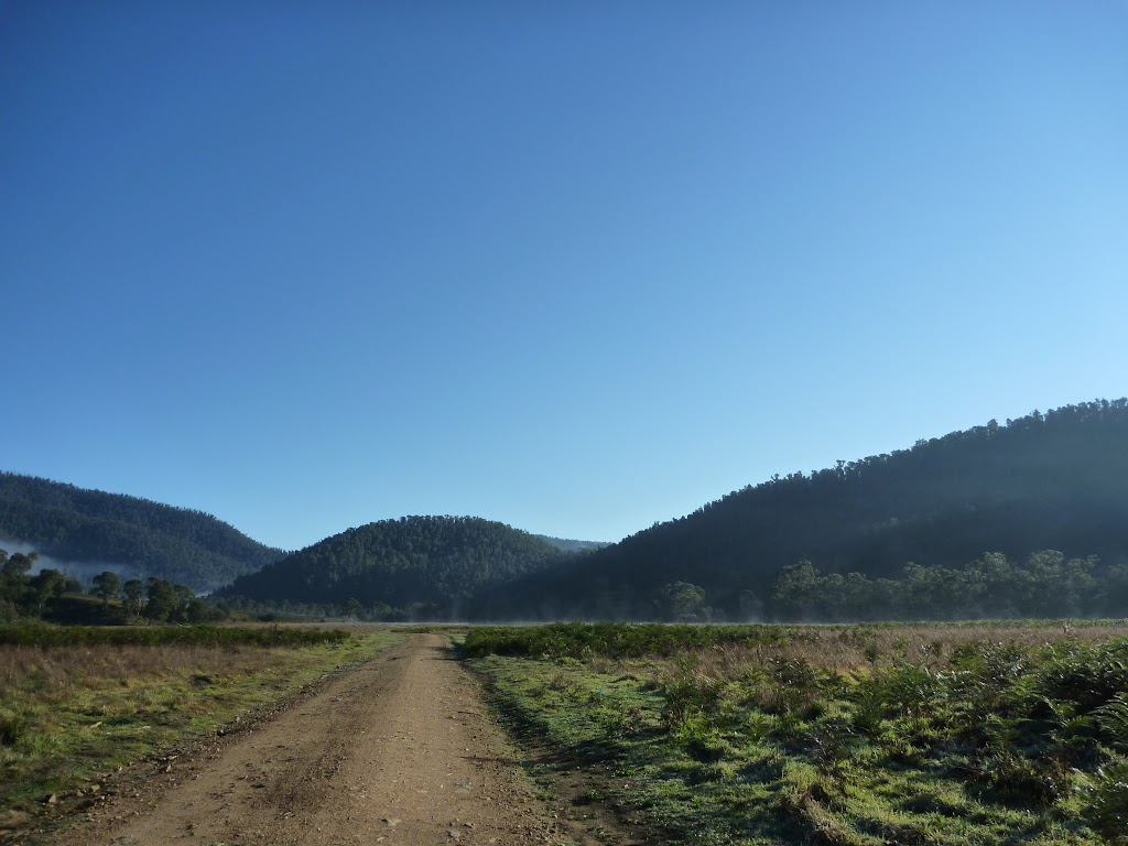 Walking along the 4WD trail at Behrs Flat