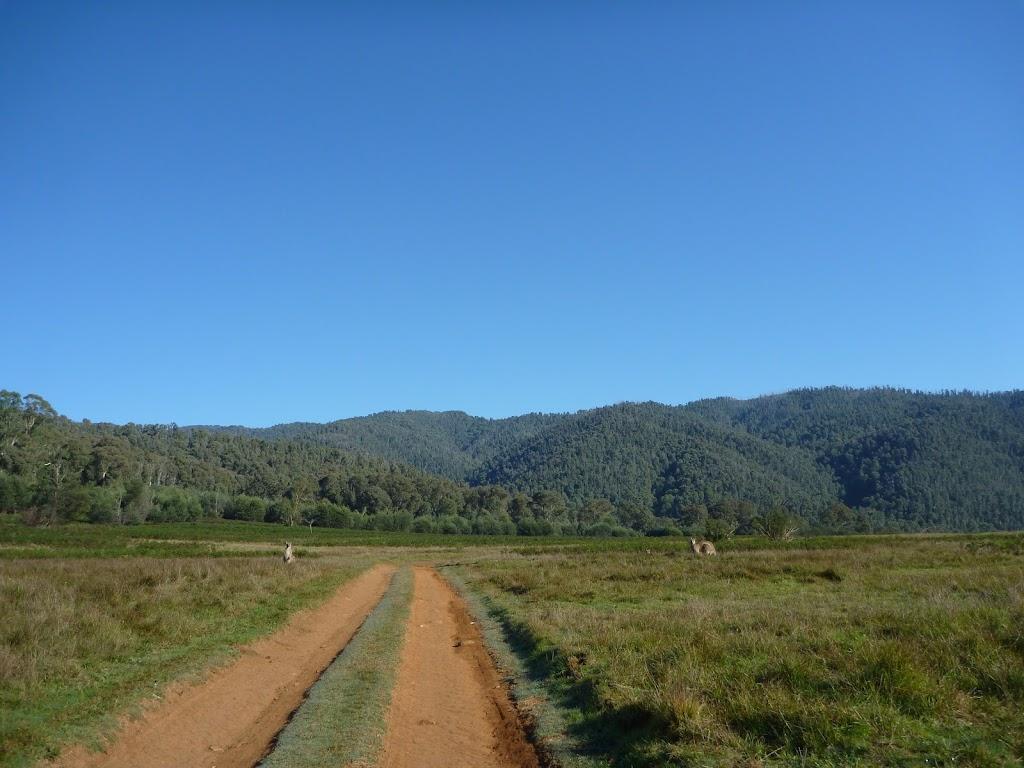 Walking along Behrs Flat