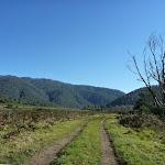 Looking along trail near Swampy Plains Creek