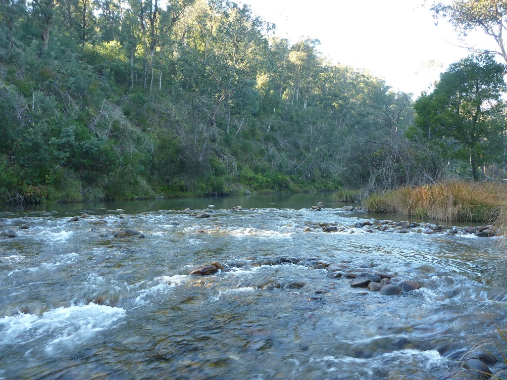 Swampy Plains Creek near Kebbles Hut