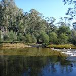 Swampy Plains River (293653)