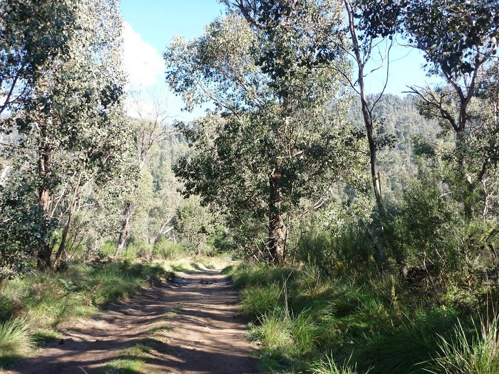 Trail near Old Geehi Hut