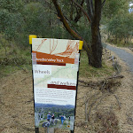 Information sign on the Thredbo Valley Track (295054)