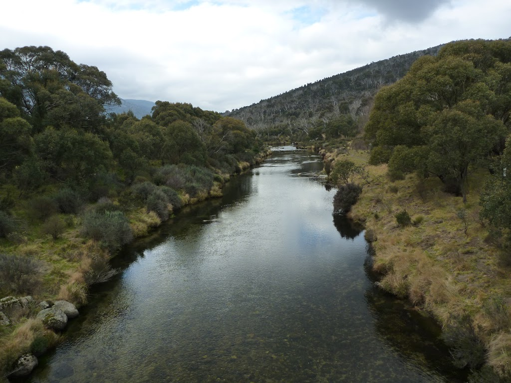 Thredbo River (295466)