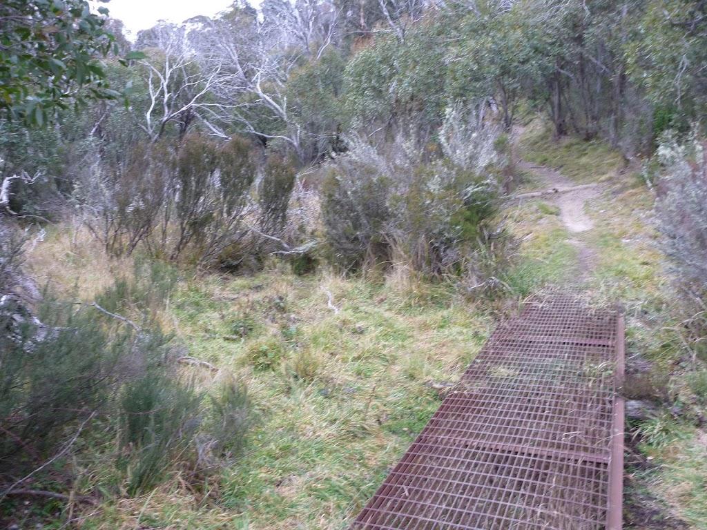 Erosion control on Bullocks Track