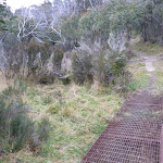 Erosion control on Bullocks Track (296078)