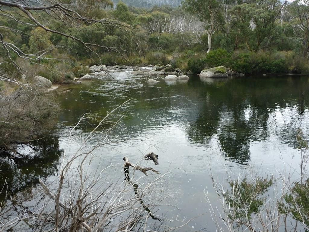 Threbo River beside Bullocks Track