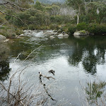 Threbo River beside Bullocks Track (296096)