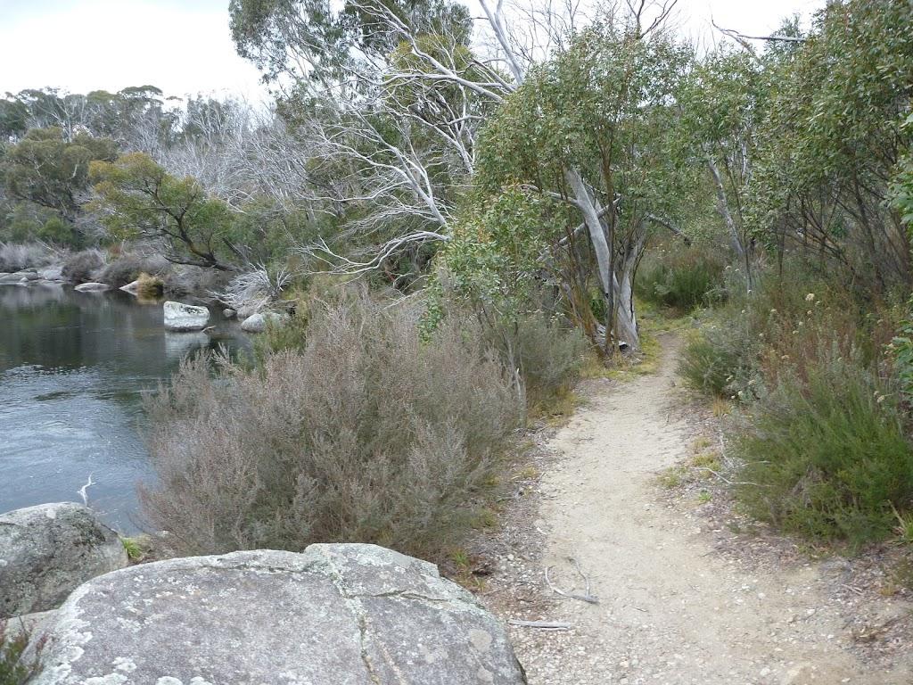Thredbo River beside Bullocks Track