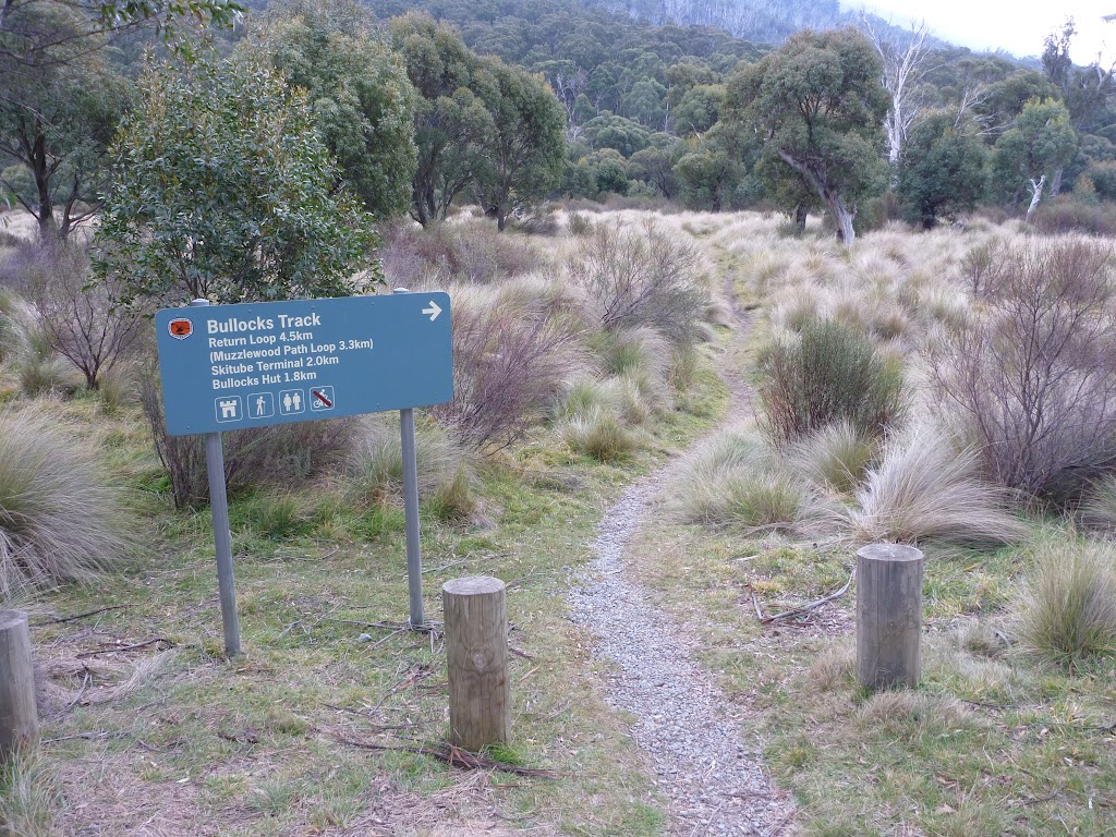 Intersection at lower end of Thredbo Diggings Camping area