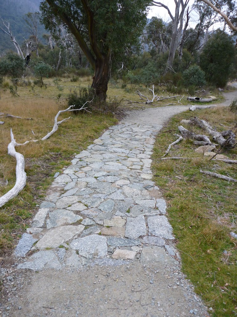 Section of stone path