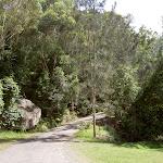 The Basin service trail into the campsite
