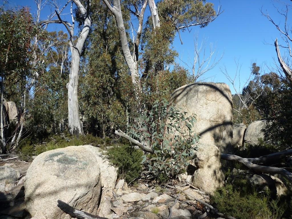 Walking amoung some granite boulders