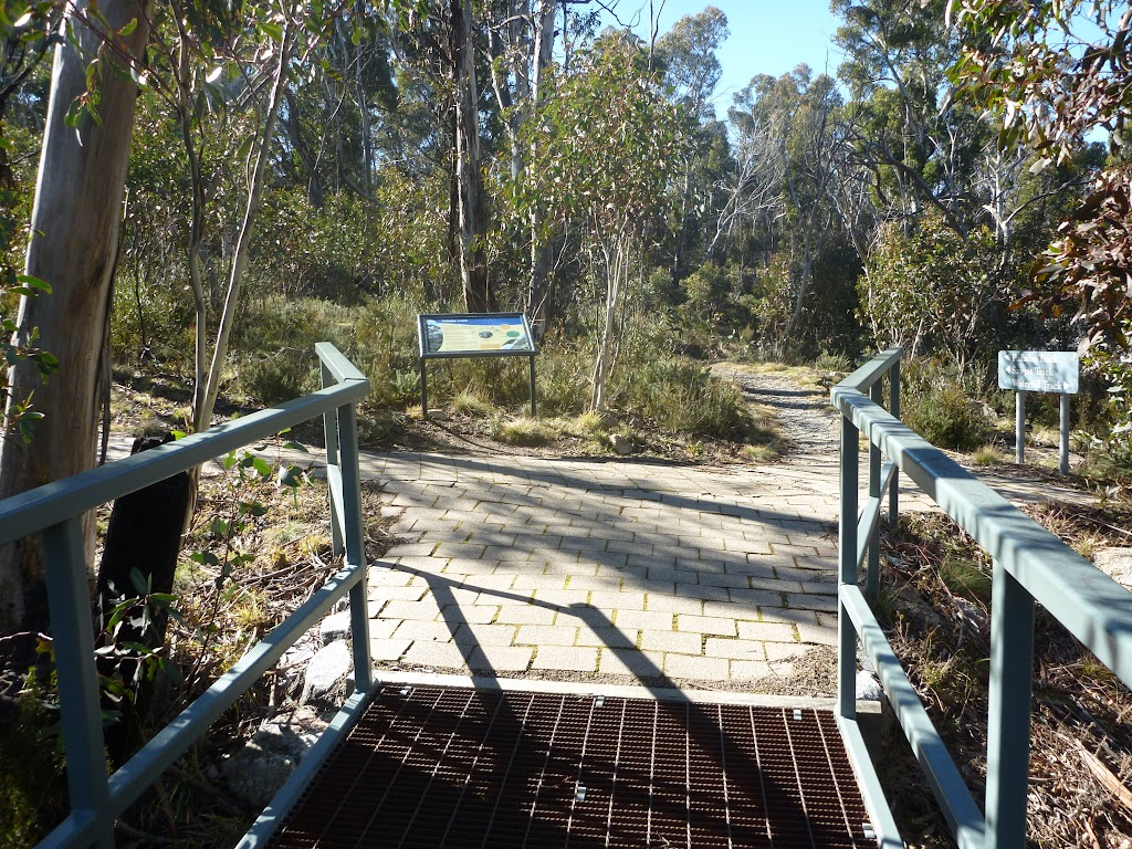 Crossing Sawpit Creek