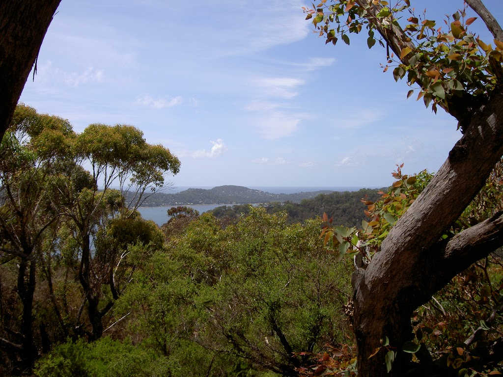 View over Pittwater from The Basin Track