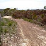 Mackerel service trail
