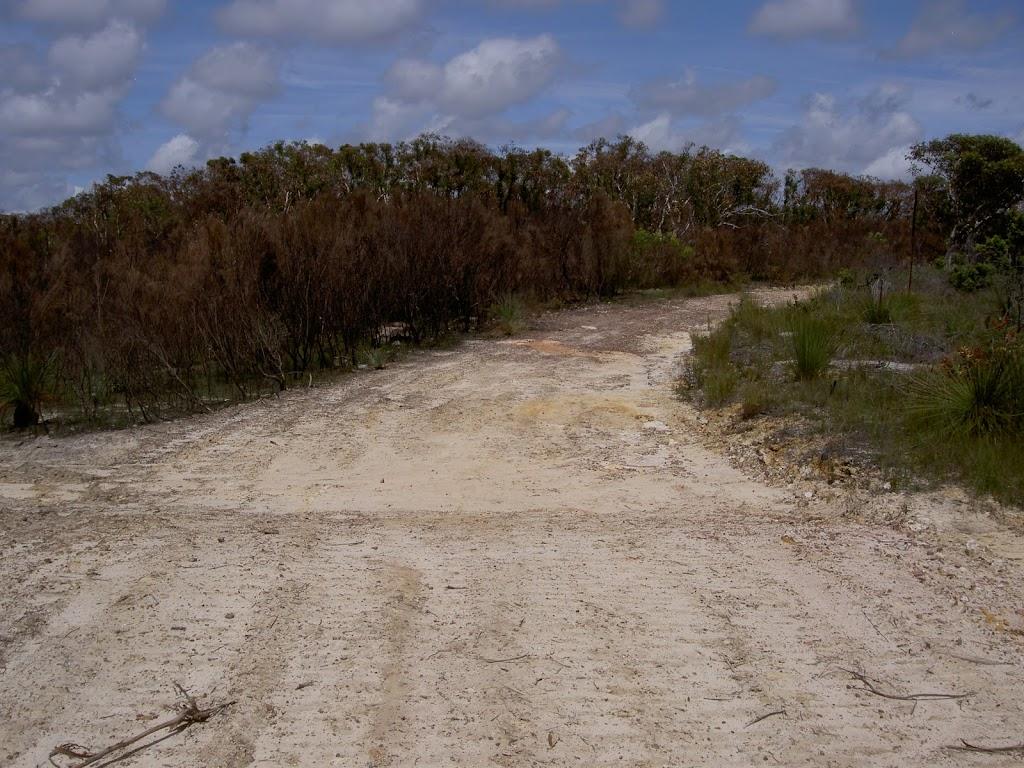 Mackerel Beach service trail
