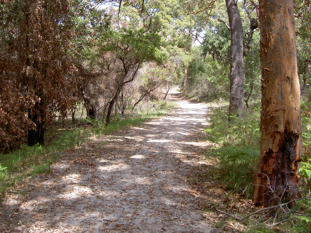 Mackerel Beach service trail (29861)
