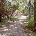 Mackerel Beach service trail (29861)