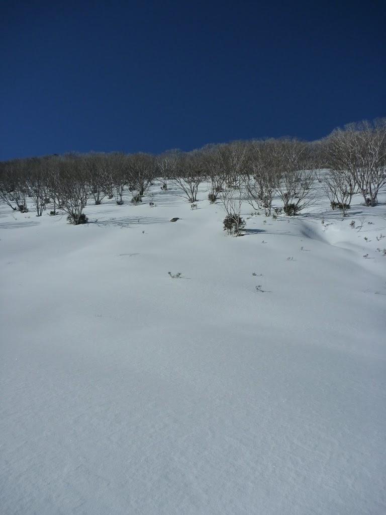 Side of Guthega River valley
