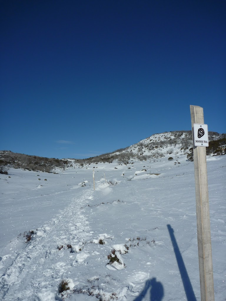 Rock Creek snowshoe pole line (299788)